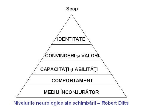 nivelurile_neurologice_ale_schimbarii.jpg