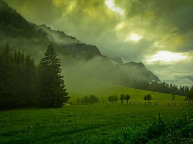 verde_crud_la_poiana_stanii_51475_l.jpg